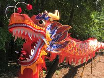 Multicolored Chinese dragon puppet royalty free stock image
