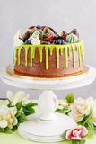 Colorful chocolate cake on white stand Stock Photos