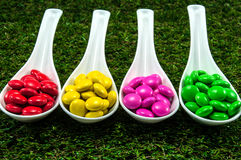 Colorful chocolate candy. Served on spoons with green grass background Royalty Free Stock Photography
