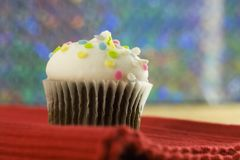 Colorful chocolate cupcake Stock Photos