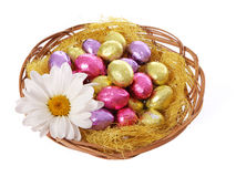 Colorful chocolate easter eggs in basket with chamomile flower Royalty Free Stock Photos