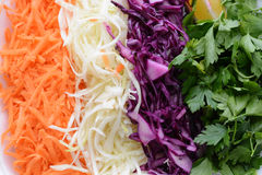 Colorful chopped vegetables in line on white casserole Royalty Free Stock Images