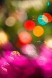 Colorful Christmas background Royalty Free Stock Images