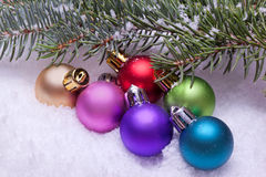 Colorful christmas ball ornaments with pine tree Royalty Free Stock Image