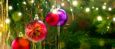 Colorful christmas balls isolated on green fir tree background. Stock Photo