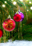 Colorful christmas balls isolated on green fir tree background. Royalty Free Stock Image