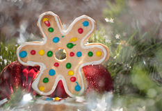 Colorful Christmas cookie on a dreamy background Stock Photos