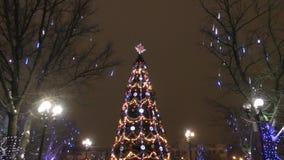 Colorful Christmas ornaments. On the Christmas tree holidaynn stock footage
