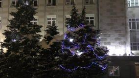 Colorful Christmas ornaments. On the Christmas tree holidaynn stock video footage