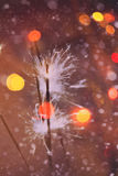Colorful Christmas Sparkler Royalty Free Stock Photos