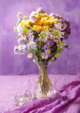 Colorful chrysanthemums bunch Stock Images