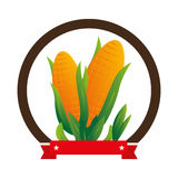 Colorful circular emblem with corn vegetable Royalty Free Stock Images