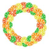 Colorful citrus frame for your text, vector royalty free illustration
