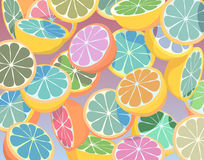 Colorful citrus fruit. Editable  colorful illustration of falling sliced citrus fruit Royalty Free Stock Photography