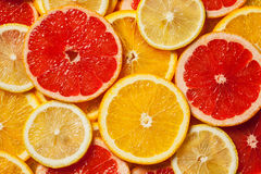Colorful citrus fruit slices Royalty Free Stock Photo