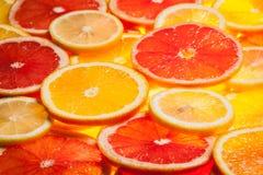 Colorful citrus fruit slices Stock Photo