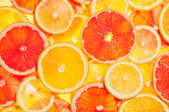 Colorful citrus fruit slices Stock Photos