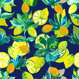 Colorful citrus garden. Royalty Free Stock Images