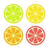 Colorful citrus slice icon Stock Photography
