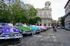 Colorful Classic Cars in Cuba. A row of colorful classic cars parked in Havana Cuba Royalty Free Stock Image