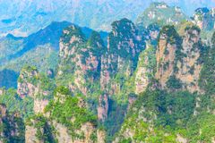 Colorful cliffs in Zhangjiajie Forest Park. Stock Image