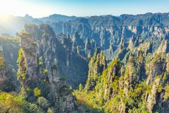 Colorful cliffs in Zhangjiajie Forest Park at sunrise time. Stock Photos