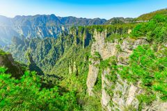 Colorful cliffs in Zhangjiajie Forest Park at sunrise time. Stock Photo