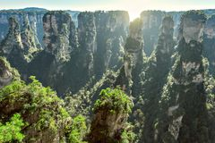 Colorful cliffs in Zhangjiajie Forest Park. Stock Photography