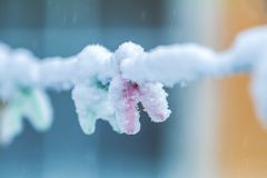 Winter outdoors on a rope hanging clothespins torn by snow royalty free stock photos