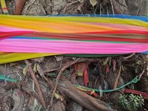 Colorful cloth line on tree trunk for worship god. In Thailand Stock Photos