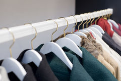 Colorful clothes on hangers at shop Royalty Free Stock Photography
