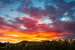 Colorful clouds at sunset Royalty Free Stock Photo