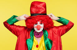 Colorful clown Stock Images