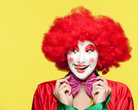 Colorful clown Stock Photography