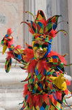 Colorful clown Royalty Free Stock Images
