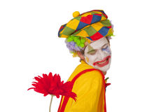 Colorful Clown With Flower Stock Images