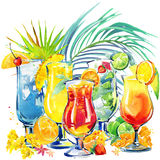 Colorful cocktail. Hand drawn watercolor illustration of cocktail fruit and tropical leaves background Royalty Free Stock Photography