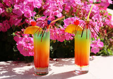 Colorful cocktail with ice. Summer concept. Stock Photography