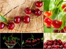 Colorful collage of different fruits and berries. Colorful collage of different fruits and berries, for a food background. Photo of mixed various kinds of royalty free stock photos