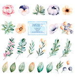 Colorful collection with 25 watercolor elements Royalty Free Stock Photography