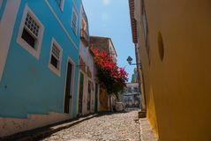 Colorful colonial houses at the historic district of Pelourinho. The historic center of Salvador, Bahia, Brazil. Historic neighborhood famous attraction for royalty free stock images