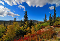 Colorful Colorado. Scenic Fall in Colorado and natural landscape and vivid colors Royalty Free Stock Image