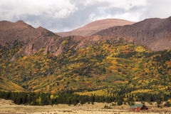 Colorful Colorado. Autumn colors in Pike National Forest near Pike's Peak and Cripple Creek in Colorado Stock Images