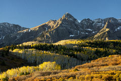 Colorful Colorado. Early morning autumn colors at Mt. Sneffels in the San Juan Mountains of Southwest Colorado Stock Images