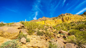 Colorful Colorful Yellow and Orange Geological Layers of Usery Mountain surrounded by Large Boulders, Saguaro and other Cacti Stock Image