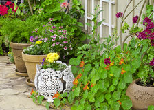 Colorful container flower garden Stock Photos