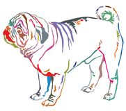 Colorful decorative standing portrait of dog pug vector illustra. Colorful contour decorative portrait of standing in profile dog pug, vector isolated Royalty Free Stock Image