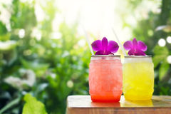 Colorful cool drink in summer on nature background Stock Photography