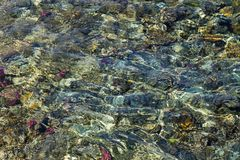 Colorful coral reef under the wavy water surface Stock Photography