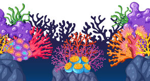 Colorful coral reef underwater Stock Images